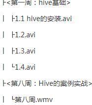 【快速掌握HIVE视频教程】HIVE数据仓库完美实战课程