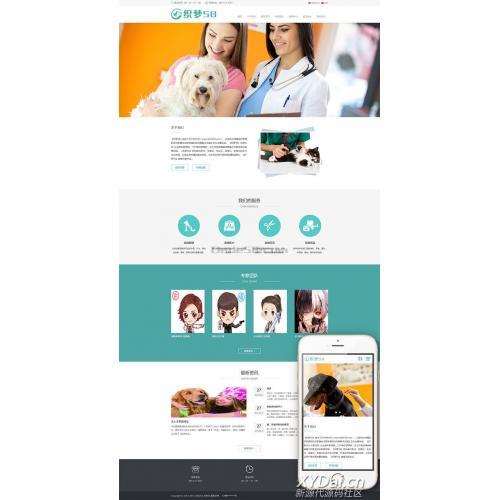 中英双语响应式宠物狗宠物医院诊所类网站织梦模板(自适应)+利于SEO优化