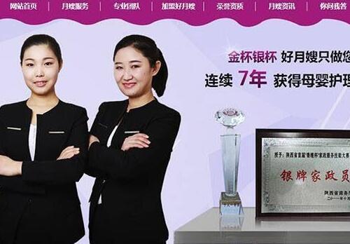 营销型家政服务月嫂保健类网站织梦模板(带手机端)+PC+移动端+利于SEO优化