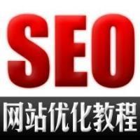 价值20000元的seo优化课程-手把手教你seo优化网站百度seo